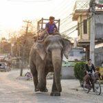 190318_0644_nepal.jpg