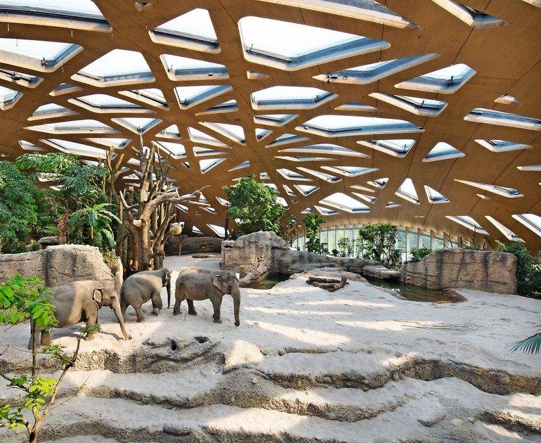 elefantentreffen klebstoff von henkel f r die dreischichtplatten des kuppeldachs im z richer. Black Bedroom Furniture Sets. Home Design Ideas