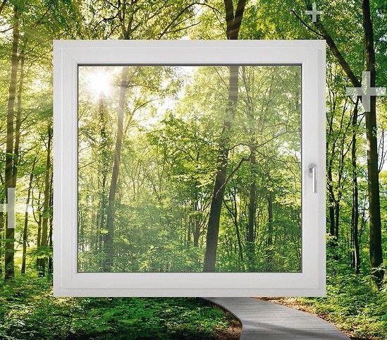 Fensterrahmen-von-Aluplast.jpg