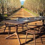 Möbelbau-präsentiert- in-südafrikanischer-Landschaft